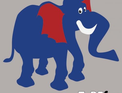 Slon – talne dekoracije